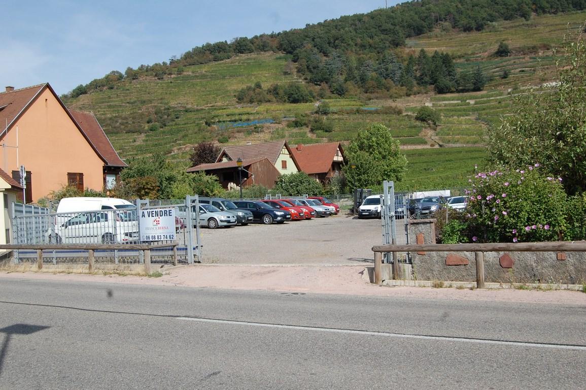 terrain-kaysersberg-vignoble-68240 (3)