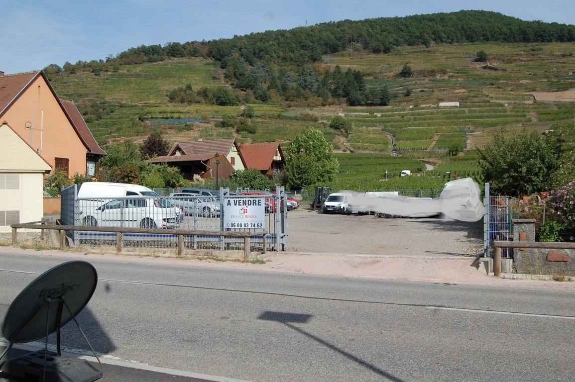 terrain-kaysersberg-vignoble-68240