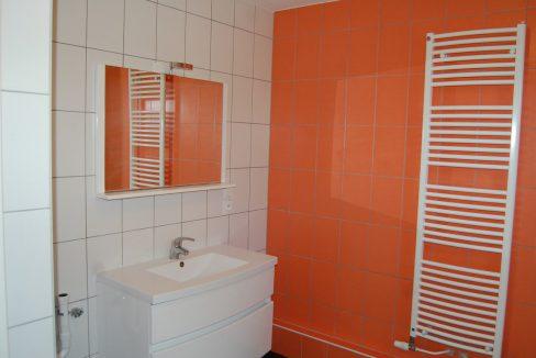 maison-villa-colmar-68000 (6)