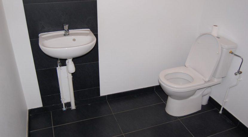 maison-villa-colmar-68000 (9)