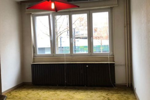 appartement-mulhouse-68100 (4)